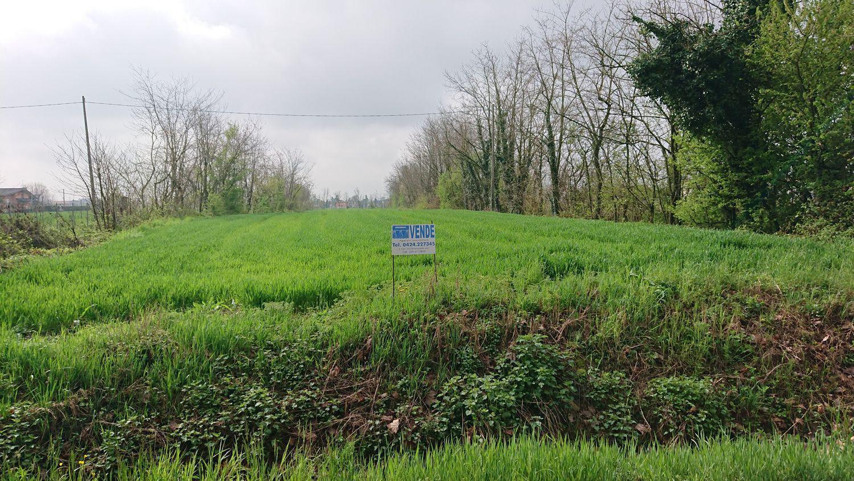 Terreno Agricolo in Vendita a Castelfranco Veneto