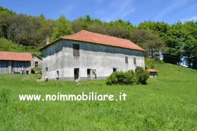 Rustico / Casale in vendita a Giusvalla, 1 locali, prezzo € 160.000 | CambioCasa.it